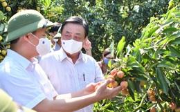 Bộ trưởng Lê Minh Hoan: Nên bỏ từ 'giải cứu nông sản'