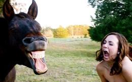 Bật cười với những con người khó đỡ nhất trên đời này