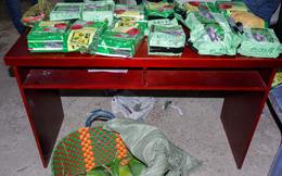 20kg ma túy ngụy trang trong túi đựng xoài từ tỉnh Đồng Tháp lên TP.HCM