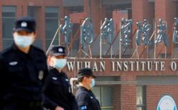 Chuyên gia Pháp: Khả năng SARS-CoV-2 thoát từ phòng thí nghiệm Vũ Hán là 0%