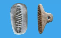 Tìm thấy con dấu 7.000 năm tuổi ở Israel