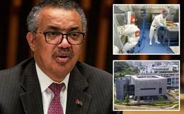 Tổng giám đốc WHO: Không loại trừ khả năng Covid-19 xuất phát từ phòng thí nghiệm Vũ Hán