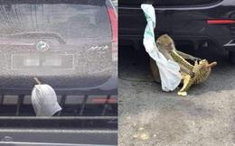 Để sầu riêng ở bên ngoài vì sợ mùi, nào ngờ mất luôn, nhìn thủ phạm chủ xe không dám manh động