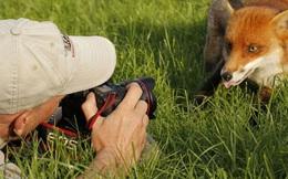 """23 bức ảnh về những phút giây """"xuất thần"""" của hệ động vật sẽ khiến bạn cười nghiêng ngả"""