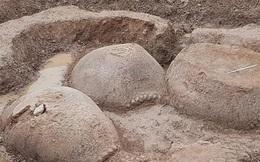 """Lão nông phát hiện 2 """"gò đất"""" to ở ven sông, nguồn gốc của chúng khiến ai cũng ngỡ ngàng"""