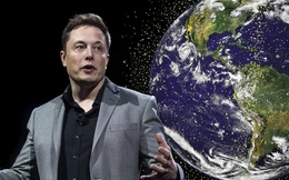 Dịch vụ Internet vệ tinh Starlink hiện đại của Elon Musk gặp đối thủ lớn: những cái cây