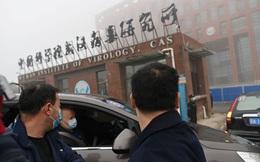 """Trở về sau cuộc điều tra COVID-19 ở Vũ Hán, chuyên gia WHO gửi bức thư mật liên quan tới vấn đề """"virus rò rỉ"""""""