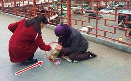 Hảo tâm cho người ăn xin 1 túi bánh, vừa quay đi, người phụ nữ đã phải sững sờ vì hành động của đối phương