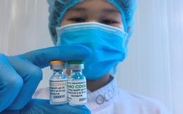 """Cục phó Bộ Y tế: Vắc xin Nano Covax xin cấp phép khẩn cấp là """"quá sớm và nóng vội"""", kết quả thử nghiệm """"chưa nói lên điều gì"""""""
