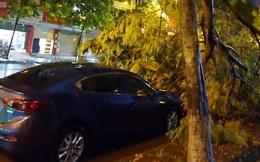 Hà Nội mưa giông, sấm chớp, nhiều tuyến đường ngập nặng, cây đổ la liệt