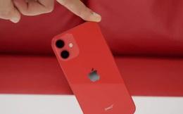 Quá ế ẩm, Apple ngừng sản xuất iPhone 12 Mini