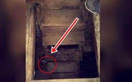 Phát hiện căn hầm bí mật trong nhà thờ tổ, tò mò xuống xem, người đàn ông ngạc nhiên khi thấy những thứ bên trong