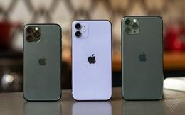 iPhone 11 sập giá xuống thấp nhất lịch sử, rẻ hơn cả hàng cũ