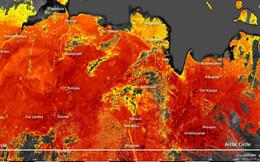 Vùng đất băng giá Siberia giờ đây đang nóng chưa từng có, nhiệt độ mặt đất lên tới 48 độ C