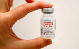 Thông tin tổng quan đầy đủ về vắc xin Moderna vừa được Việt Nam phê duyệt