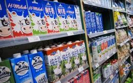 Trung Quốc đối mặt 'cơn khát' sữa trước thách thức không có đủ bò