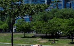 Canada: Hơn 34 người đột tử trong 1 ngày vì nắng nóng vạn năm có một