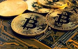 Đề nghị truy tố 16 đối tượng trong vụ cướp tiền ảo Bitcoin tương đương 35 tỷ đồng