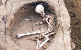 Tìm thấy 186 bộ hài cốt hỗn loạn dưới chuồng lợn: Đội khảo cổ mất 10 năm để khai quật, chủ mộ là ai?