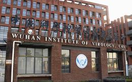 """WSJ tiết lộ báo cáo nói """"virus gây Covid-19 rò rỉ từ phòng thí nghiệm Vũ Hán"""" là đáng tin cậy"""