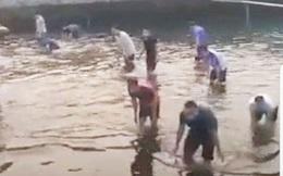 Bắc Giang: Xử lý nghiêm công nhân tập trung đông người bắt cá