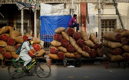 24h qua ảnh: Công nhân ngồi chờ bán ớt tại chợ đầu mối