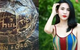 """Mẹ ca sĩ Thủy Tiên đi phóng sinh rùa, mai con nào cũng bị khắc chữ """"CV9 + Thủy Tiên"""" khiến netizen phẫn nộ"""