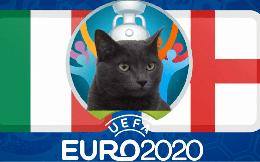 """Dự đoán tỷ số Anh vs Italia: Mèo tiên tri """"mách bảo"""" đội tuyển Anh sẽ vô địch Euro 2020"""