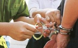 Bắt giam Phó giám đốc Công ty Nam Việt Home