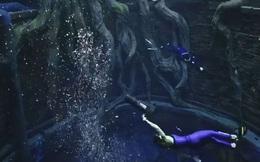Sử dụng 14 triệu lít nước, Dubai đã xây dựng được hồ bơi sâu nhất thế giới và tái hiện lại lục địa Atlantis đã mất
