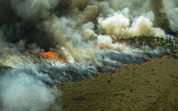 Thải ra nhiều CO2 hơn mức hấp thụ được, các nhà khoa học xác nhận rừng Amazon không còn là 'lá phổi xanh' của Trái Đất