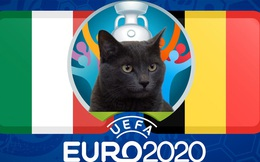 """Dự đoán tỷ số Bỉ vs Italia: Mèo tiên tri """"đặt cửa"""" vào đội tuyển Bỉ"""