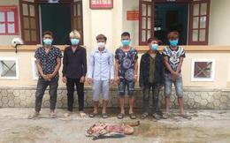 Nhóm thanh niên ở Quảng Bình giết trộm bò, xẻ lấy 4 đùi làm mồi nhậu