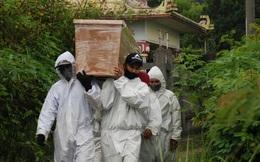Đông Nam Á trở thành 'tâm chấn' mới của đại dịch COVID-19, biến thể Delta tạo ra 'con đường chết chóc'
