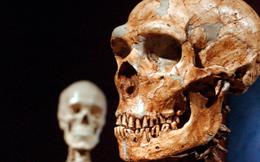 Người hiện đại có khác người cổ đại không?