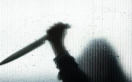 Tìm lại công lý cho nữ sinh viên bị sát hại bởi 120 nhát dao oan nghiệt