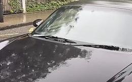 Thấy ô tô hàng xóm đỗ mãi 1 chỗ, cô gái đến gần nhìn vào trong thì sửng sốt với cảnh tượng trước mắt