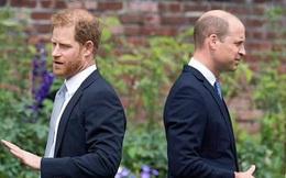 Hoàng tử William bị đấu tố dựng chuyện bôi xấu em trai Harry, cuộc chiến hoàng gia lại thổi bùng lên tranh luận gay gắt