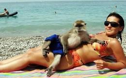 Bắt gặp hình ảnh khó tin trên bãi biển khiến bao người hoang mang