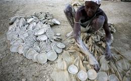 Cận cảnh cái nghèo ở Haiti nơi Tổng thống vừa bị ám sát: May mắn mới kiếm được 70.000 đồng/tuần, cái đói đáng sợ hơn virus Corona
