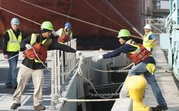 Lĩnh vực nhiều doanh nghiệp sẵn sàng trả lương 80-100 triệu đồng/tháng đang 'hot' ra sao tại Việt Nam và các thị trường quốc tế?