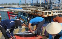 Thủy sản Việt Nam sẽ tổn thất khoảng 480 triệu USD/năm nếu mất thị trường EU
