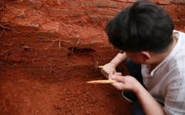 """Ngôi mộ kỳ lạ nhất thời Hán: Không hài cốt, không châu báu, thứ bên trong khiến học giả thốt lên: """"Vàng bạc làm sao sánh nổi!"""""""