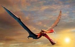 Quái vật đầu cá sấu, sải cánh dài 7m từng thống trị bầu trời Australia