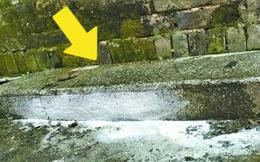 Nhìn thấy miếng đá bí ẩn bị người làng dẫm đạp suốt bao năm, chuyên gia đứng hình: Một sai lầm khủng khiếp!
