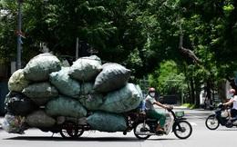 7 ngày qua ảnh: Người đàn ông chở rác tái chế trên đường phố Hà Nội