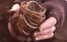 Mất búa lại tìm được vàng: Người đàn ông choáng váng khi biết mình đã phát hiện kho báu lớn nhất nước Anh!