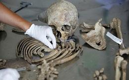 Phát hiện rùng rợn bên trong hang động dài 1.500m: 'Kẻ sưu tập hàng trăm nghìn bộ xương' lộ diện