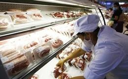 Công ty Thực phẩm Thanh Nga cung cấp thực phẩm cho những nơi nào?