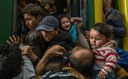 Chiến sự đã dừng ở Afghanistan nhưng cơn ác mộng nào đang khiến EU chìm trong hoảng loạn?